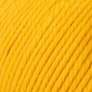 Yarn and Colors Mustard